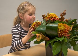 Meisje verkent bloemen op de tast